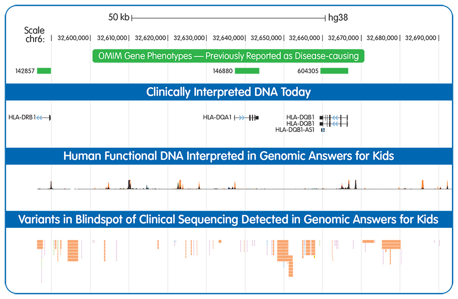 Chart displaying OMIM Gene Phenotypes, Clinically Interpreted DNA Today, Human Functional DNA Interpreted in Genomic Answers for Kids, and Variants in Blindspot of Clinical Sequencing Detected in Genomic Answers for Kids