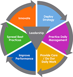 """The word """"Leadership"""" is surrounded by the following words, making a continuous circle with arrows: Innovate, Deploy Strategy, Practice Daily Management, Provide Care/Do Our Daily Work, Improve Performance, Spread Best Practices."""