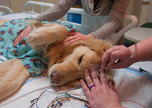 The EMU tech uses a small tube to dry the glue on Hope's head at Children's Mercy.