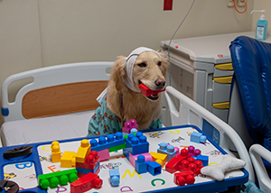 Hope plays with toys in the EMU at Children's Mercy.