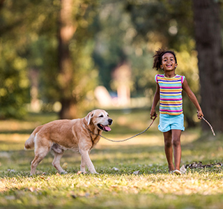 Young preteen girl walking in a park, carrying a stick and holding a dog on a leash.